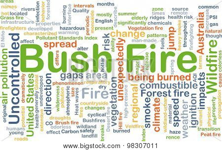 Background concept wordcloud illustration of bush fire