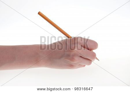 Woman's Hand Holding A Pencil