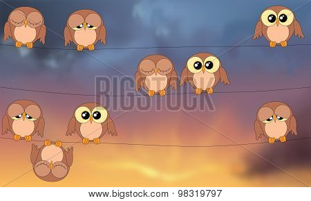 Owls Sitting On Power Lines Against Stormy Sky