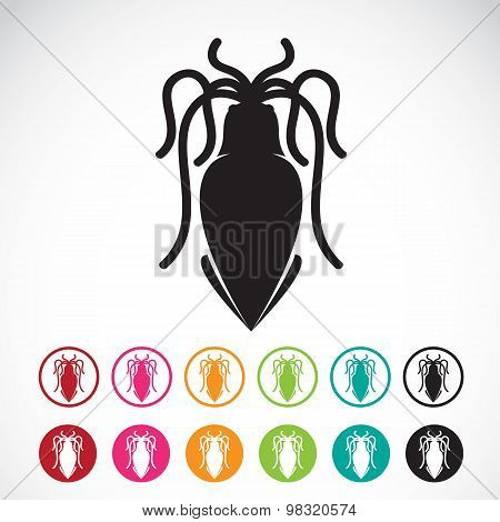 Vector Image Of An Squid On White Background.