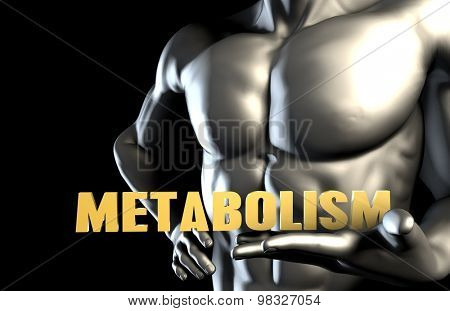 Metabolism With a Business Man Holding Up as Concept