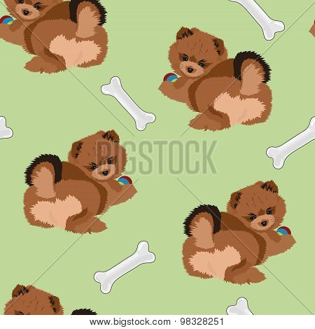 Vector Cute Seamless Dog Pattern With Pomeranian Spitz Puppy And Bones.