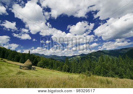 Carpathian mountain landscape