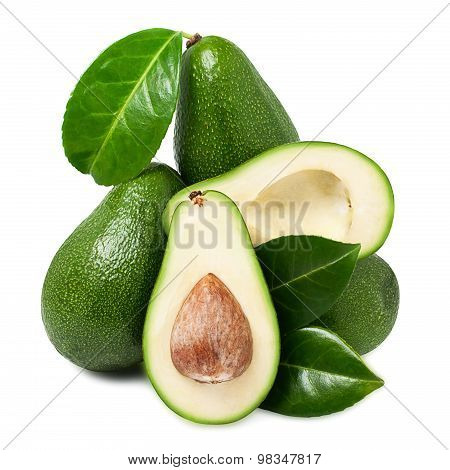 avacado with leaves on white background for your design