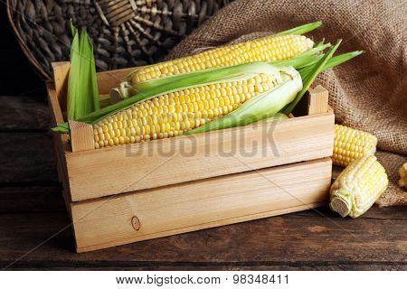 Fresh corn on cobs in wooden crate on table, closeup