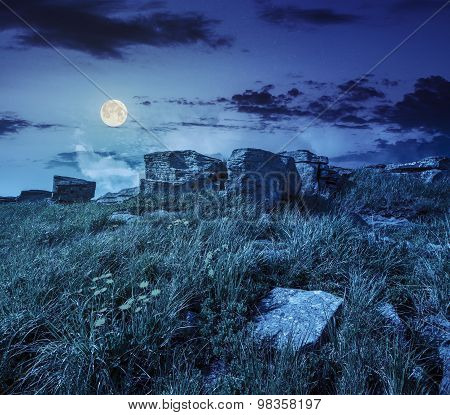 Dandelions Among The Rocks On Hillside At Night