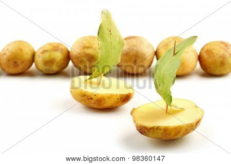 young potatoes with bay leaves isolated on white