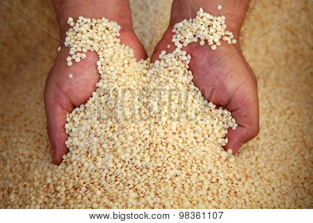 Plastic Granulated