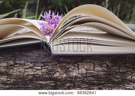 Opened book on a natural background