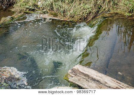 Freshwater Stream 6