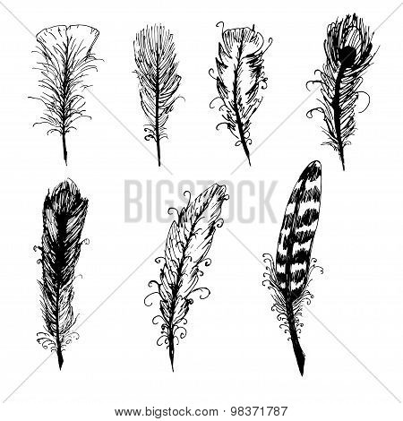 Hand drawn ink feather set.