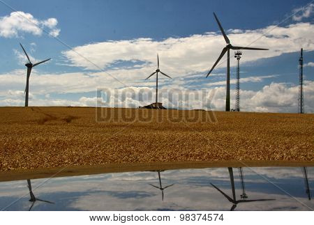 Wind Power Plant With A Field Of Grain