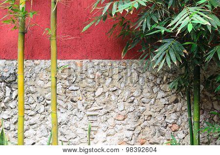Closeup Of Half Red Half Gray Stone Wall And Bamboo