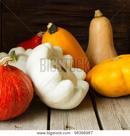 Ripe Pumpkin With Autumn Squash For Halloween