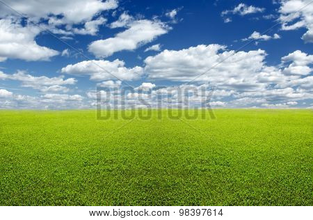 Natural background: flat green lawn and sky