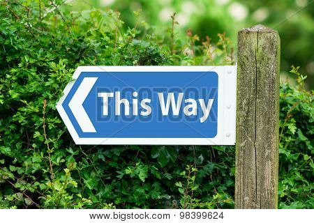 Direction Arrow, Sign To This Way in Blue Color