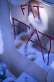 picture of bulimic  - Close up of red writing fat on bathroom mirror - JPG
