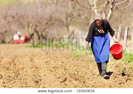 Senior Woman Farmer Aussaat