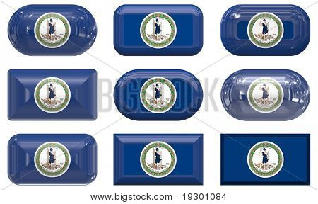 nine glass buttons of the  Flag of Virginia