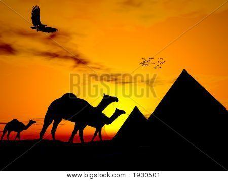 Egipto puesta del sol del desierto