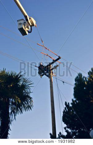 Power Pole Climber