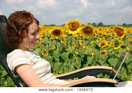 Working By The Sunflowers