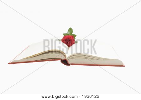 Opened Book With Rose