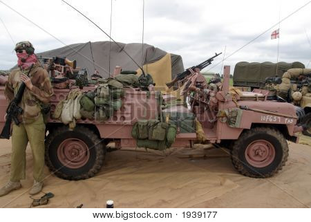 Sas Pink Panther