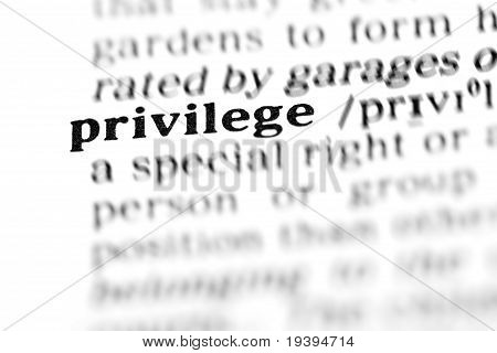 Privilege (the Dictionary Project)