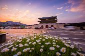 Gyeongbokgung Palace, Cars Passing In Front Of Gwanghuamun Gate After Sunset In Downtown Seoul, Sout poster