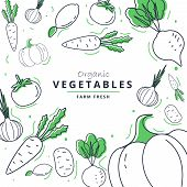 Farm Fresh Vegetables Poster. Sketch Style Vector Illustration.vegetables Big Set. poster