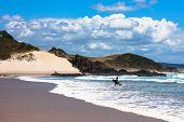 Surfer's Paradise - New Zealand
