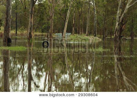 Brisbane, Australia - Jan 25 : One Year On Brisbane Flooding Again, Tyre Swing Flooded Burpengary Ja