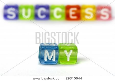 Text My Success On Colorful Wooden Cubes