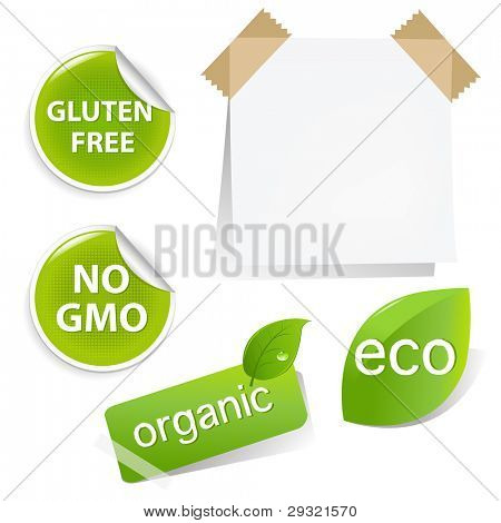Eco Labels Set, Isolated On White Background, Vector Illustration