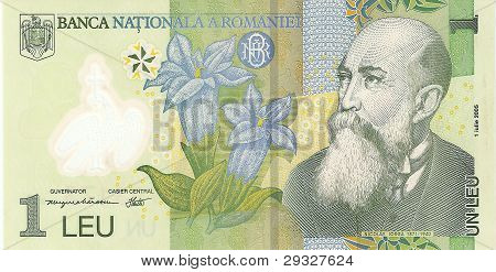 The banknote is a Romanian leu, the sample in 2005, the front side.