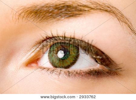 Eye With Lenses
