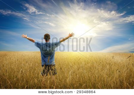 Man in yellow wheat meadow.