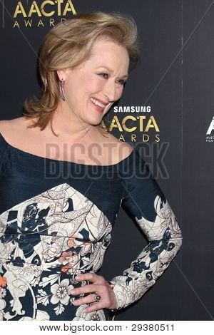 LOS ANGELES - JAN 27:  Meryl Streep arrives at the AUSTRALIAN ACADEMY INTERNATIONAL AWARDS at Soho House on January 27, 2012 in West Hollywood, CA