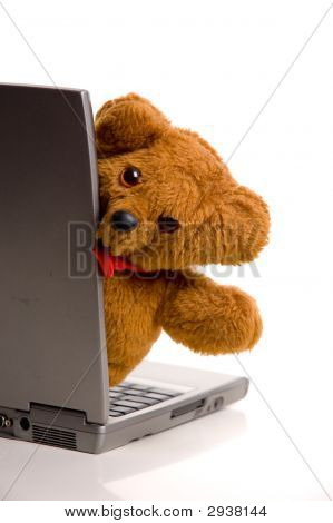 Teddy Bear And Laptop Computer