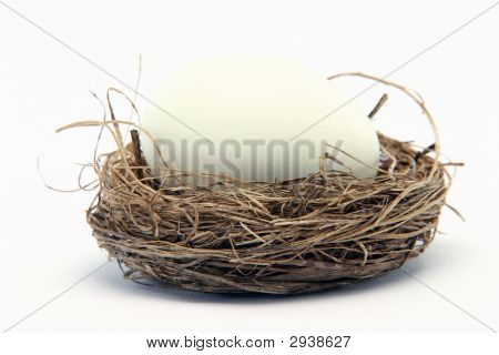 Big Egg Small Nest