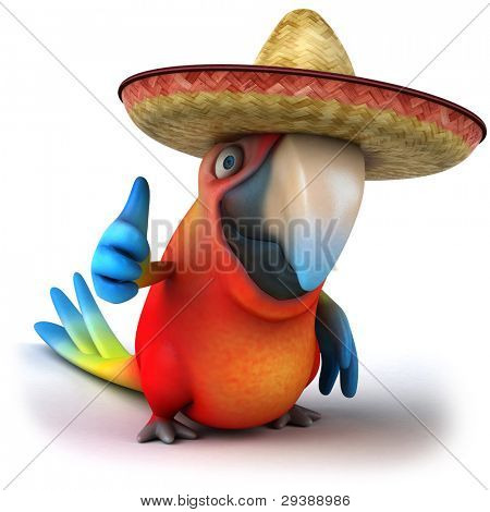 Mexican parrot