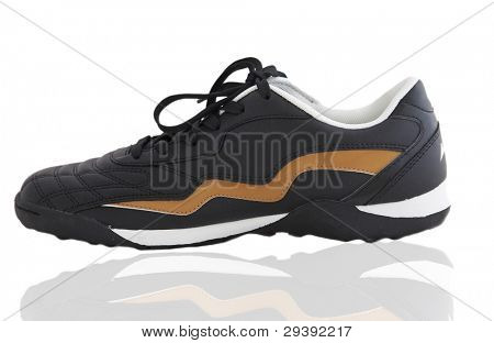 isolated sports shoe
