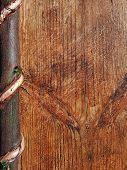 Wooden Vintage Background For Design List, Book, Sheet, Menu, Blank Paper, Cover, Board. Old Natural poster