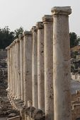 The ruins of the ancient Roman city. Beit Shean. Israel