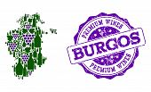 Vector Collage Of Grape Wine Map Of Burgos Province And Purple Grunge Stamp For Premium Wines Awards poster
