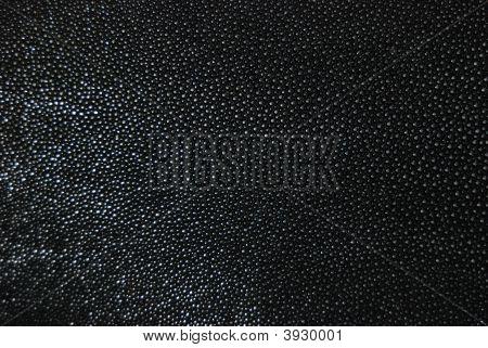 Black Ray Skin