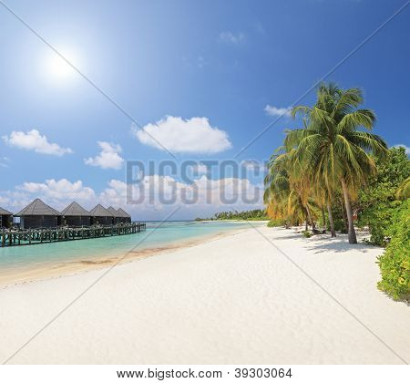 Sandy beach with palm trees and villa cottages at Kuredu island, Maldives, Lhaviyani atoll