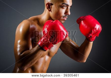 Muscular boxer in studio shooting