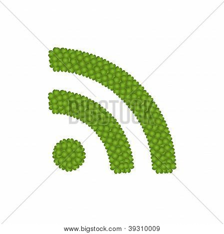 Four Leaf Clove Of Rss Feed Sign